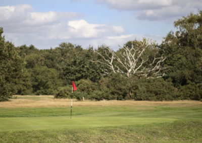 Location Photography wimbledon golf course